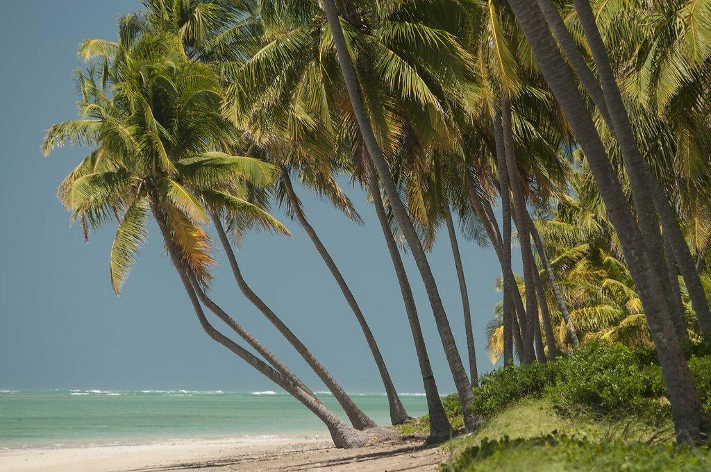 Praia do Patacho