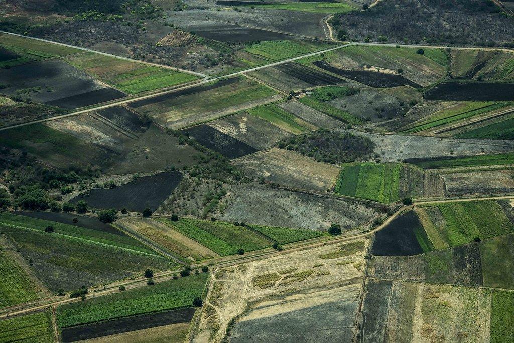 Região irrigada do Vale do Piranhas-Açú, Rio Grande do Norte.